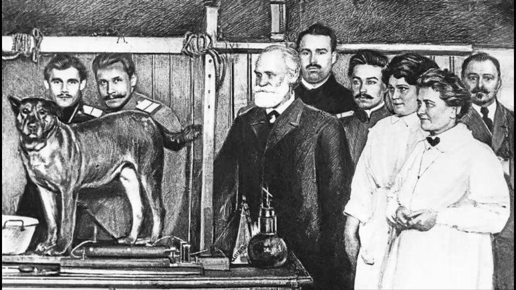 Pavlov y los precedentes del experimento del pequeño Albert