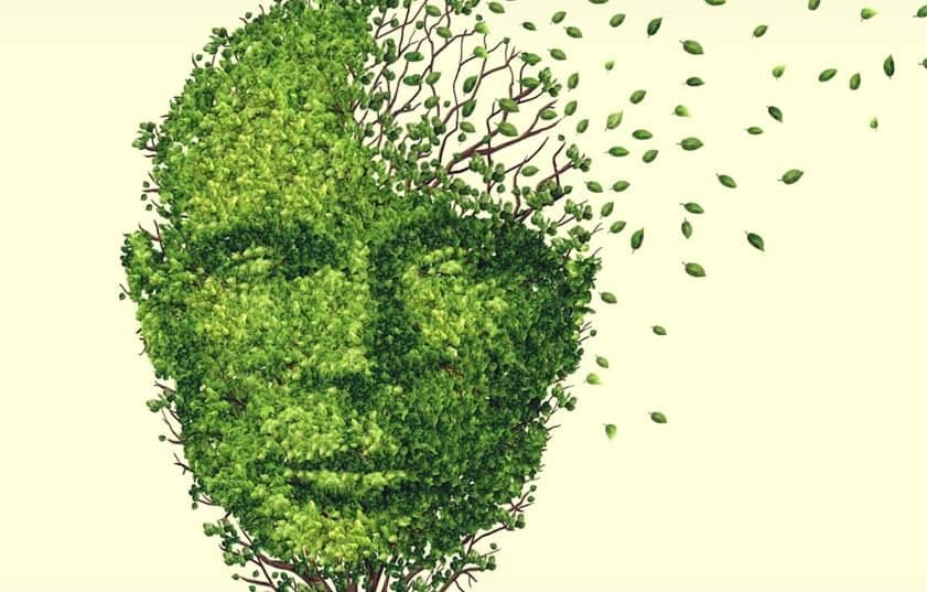 Figura hecha de hojas representando la pérdida de memoria debido al estrés