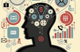 cerebro llevando a cabo funciones ejecutivas