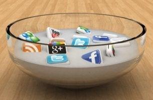 bol simbolizando la dieta de contenidos digitales