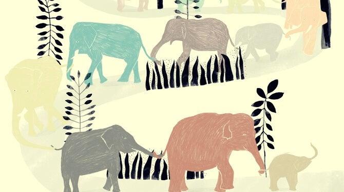 manada de elefantes simbolizando una historia para pensar