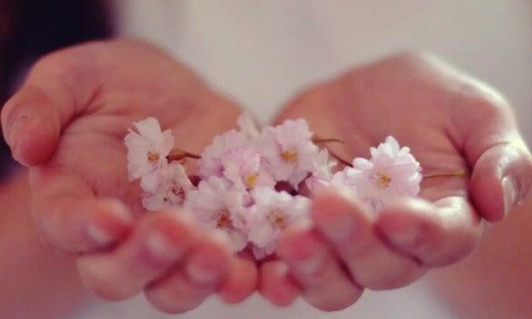 La abundancia es una realidad a la que te conectas desde el interior
