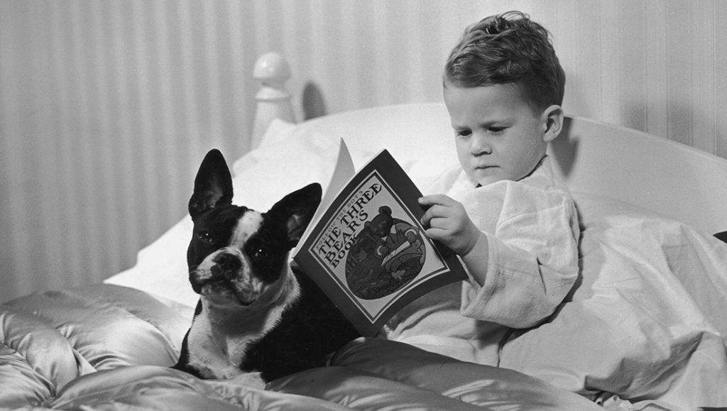 niño con su perro que disfruta de leer antes de dormir