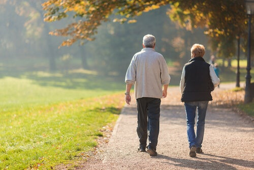 Pareja de personas mayores hablando de los beneficios de pasear mientras caminan