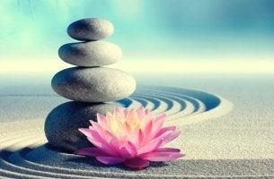 piedra con flor representando los mandamientos zen
