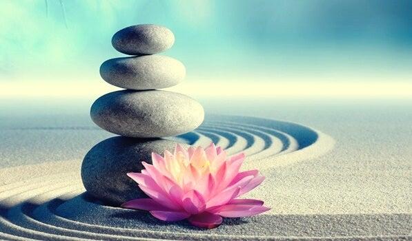 7 mandamientos zen para cambiar de vida