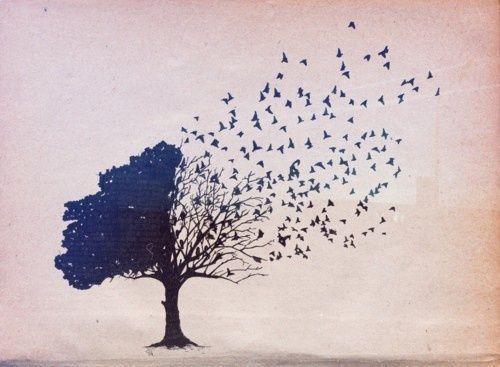 árbol deshaciéndose en pájaros simbolizando el efecto de los tomadores emocionales