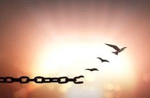 Cadena que se convierte en pájaros simbolizando frases que te ayudarán a perdonar