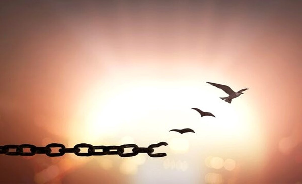 7 Frases Que Te Ayudarán A Perdonar La Mente Es Maravillosa
