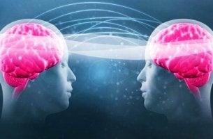 dos cabezas con cerebros rosados representando el impacto del triptófano y la serotonina