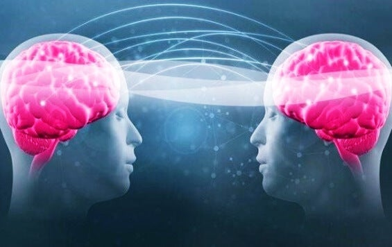El triptófano y la serotonina: descubre cómo aumenar tu bienestar