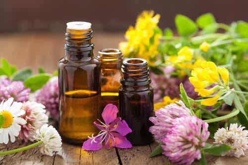 Aromaterapia, el maravilloso poder de los olores