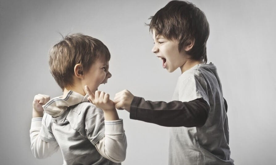 Hermanos peleando donde uno de ellos sufre un trauma infantil que predispone a la psicosis