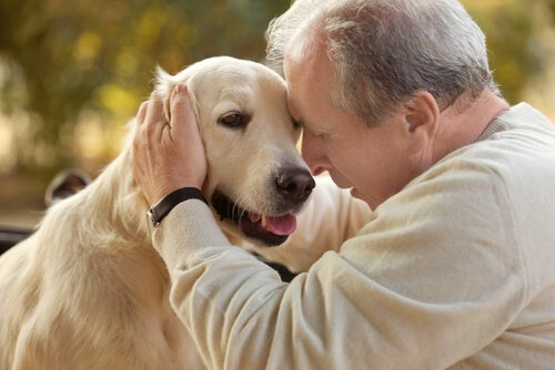 Terapia asistida con animales en personas con Alzheimer