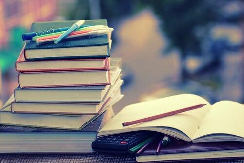 Libros y apuntes de un opositor