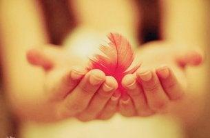 mano con pluma simbolizando la amabilidad
