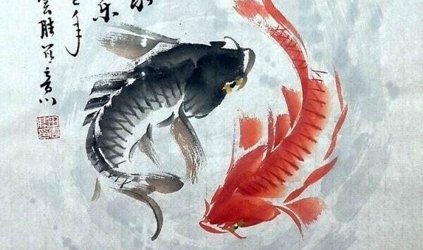 Peces de color negro y rojo simbolizando la teoría del Yin y el Yang