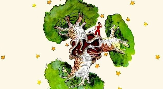 Un baobab en el corazón, una reflexión de El Principito