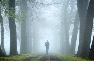 imagen representando el test del bosque