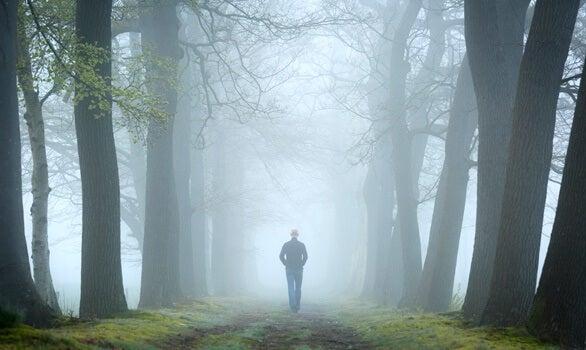 El test del bosque, una prueba del psicoanálisis relacional