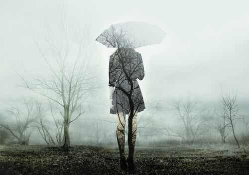 Mitos sobre el duelo: trampas comunes en la gestión de la pérdida