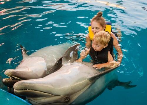 Niño haciendo delfinoterapia