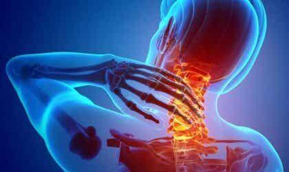 Nociceptores, los receptores del dolor
