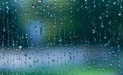 El sonido de la lluvia: melodía de calma para nuestro cerebro