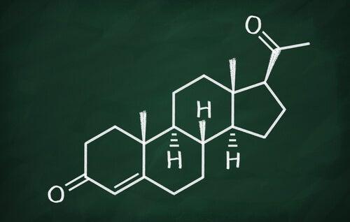 Progesterona: características y funciones