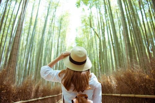 Conectar con la naturaleza: 4 ejercicios