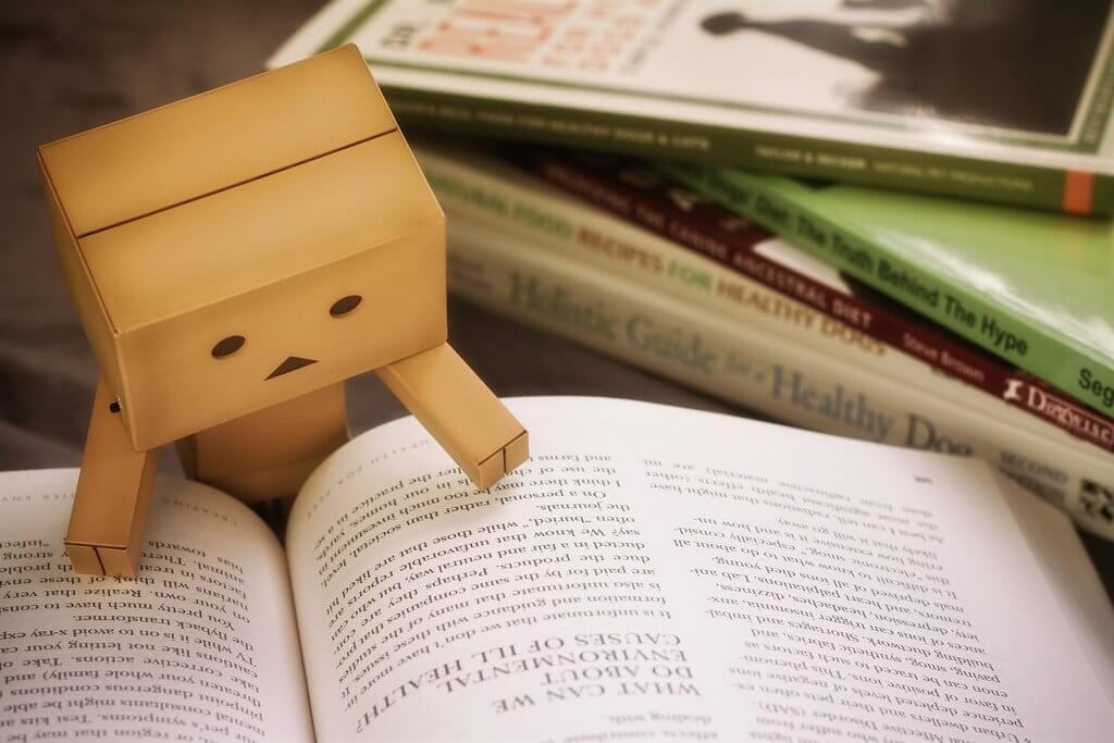 Muñeco con un libro