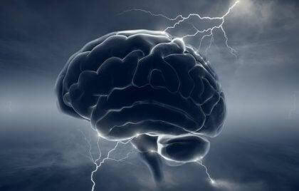 """Neurobiología del psicópata: cuando el cerebro pierde su """"humanidad"""""""