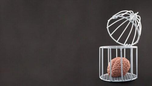Cerebro con una jaula encima