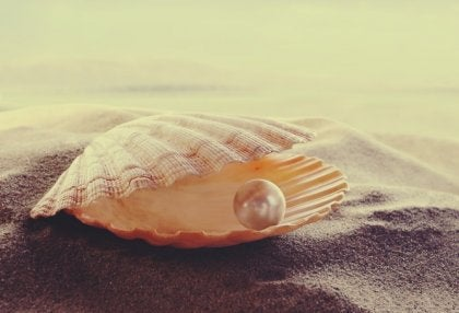 concha con perla simbolizando los proverbios persas
