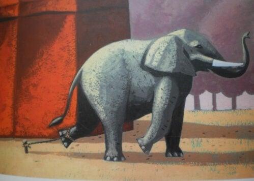 La bella historia del elefante encadenado