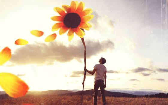 hombre sujetando girasol simbolizando el principio de Pollyanna