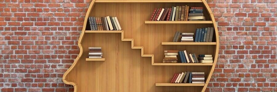 Libro ordenados en una estantería con forma de cabeza