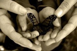 Manos con una mariposa