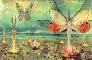 Mujeres mariposa