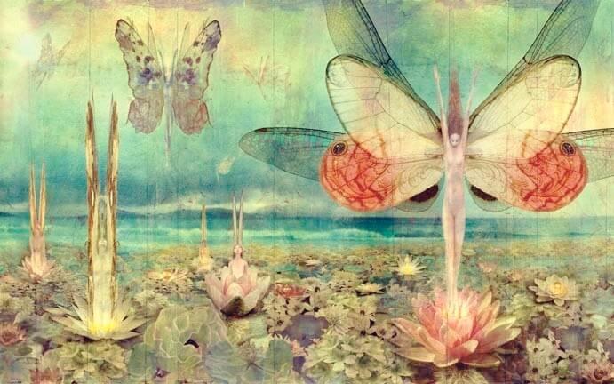 mujeres mariposa representando a la personalidad tóxica