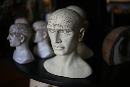 Figura con zonas de cabeza señaladas