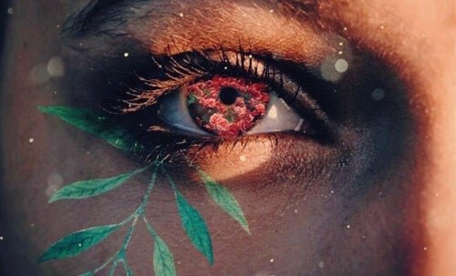 ojo simbolizando la emodiversidad