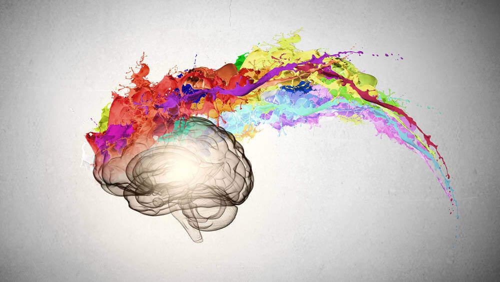 Cerebro con un rastro de colores