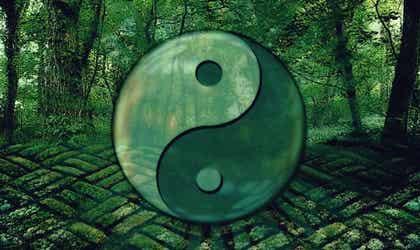 7 frases del Tao para evolucionar