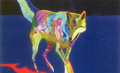 imagen simbolizando la medicina del lobo