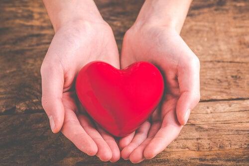 Cómo afecta la generosidad al cerebro