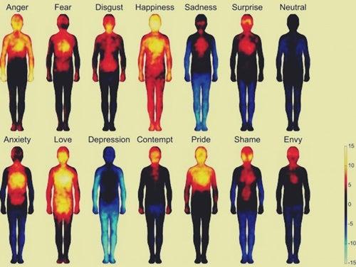 mapa de las emociones representando la terapia somática