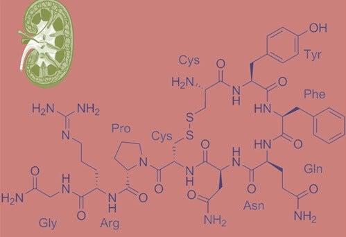 fórmula de la vasopresina