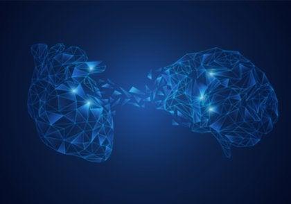 El modelo de integración neurovisceral: la conexión cerebro-corazón