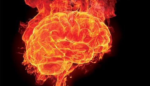 cerebro en llamas